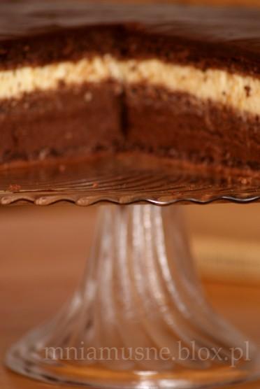 Tort Andaluzja
